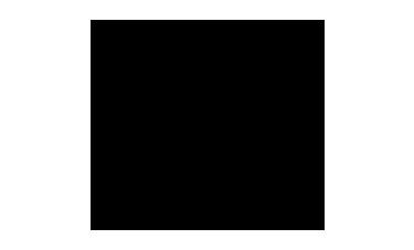 tinbra-direcao-1
